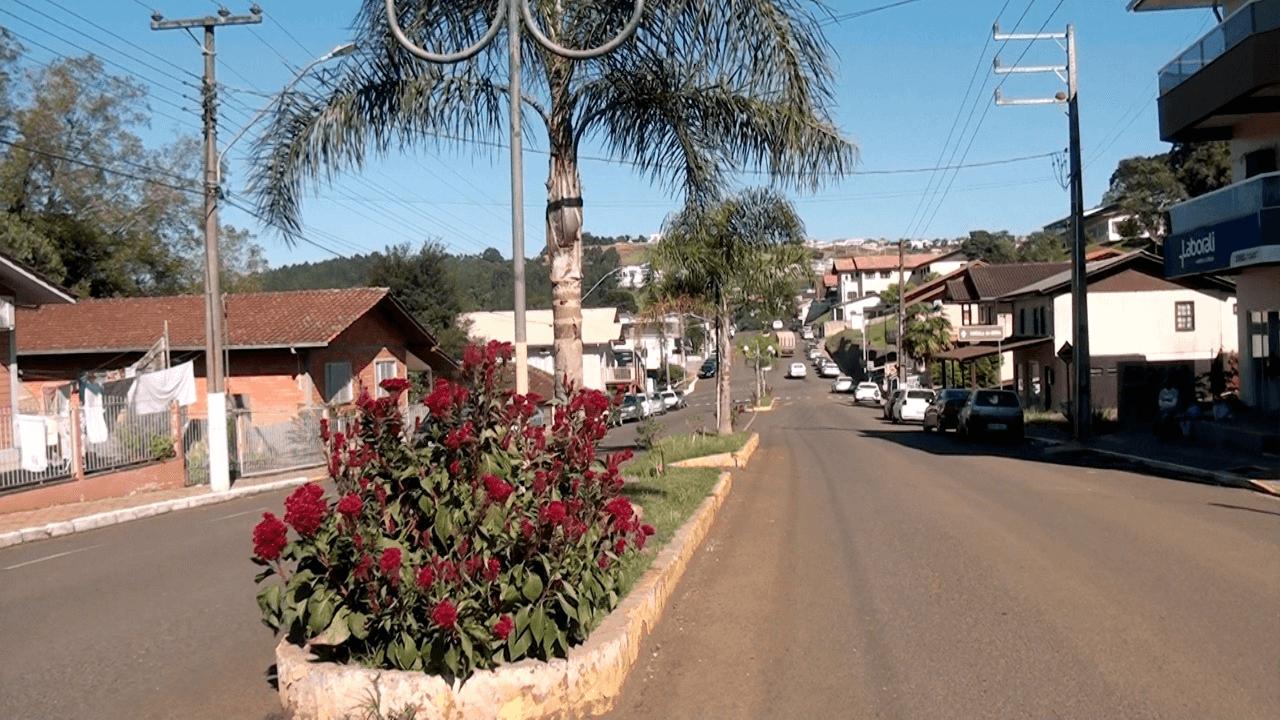 Pinheiro Preto